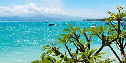 Bådtur til smukke Lembongan