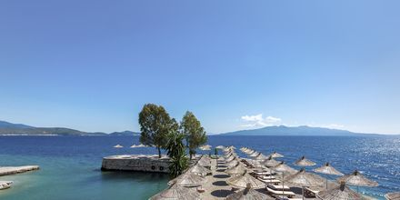 Stranden ved Hotel Saranda Palace i Albanien