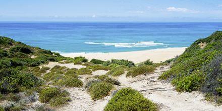 Scivu Beach på Sardinien.