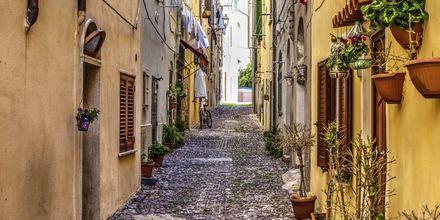 Alghero på Sardinien.