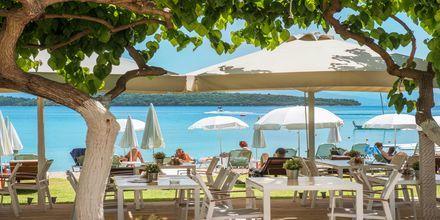 Snackbaren på Hotel Seaview på Lefkas, Grækenland.