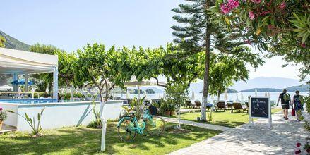 Frodige omgivelser omkring Hotel Seaview på Lefkas, Grækenland.