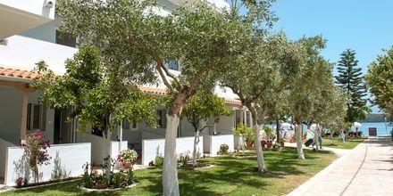Hotel Seaview på Lefkas, Grækenland.