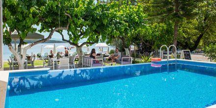Poolen på Hotel Seaview på Lefkas, Grækenland.