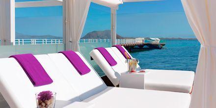 Secrets Bahia Real Resort & Spa