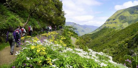 Vandring på Madeira i Portugal.