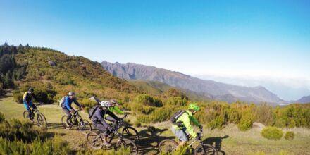 Madeira er en fantastisk ø til cykling.