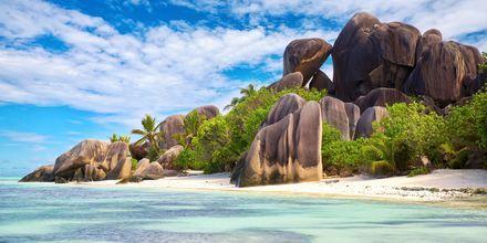 Stranden Anse Source d'Argent på øen La Digue er en af de smukkeste i Seychellerne.