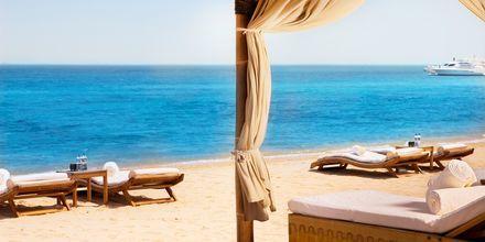 Stranden som tilhører Sharq Village & Spa i Doha, Qatar.