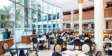 Palmehave på Sheraton Jumeirah Beach Resort i Dubai, De Forenede Arabiske Emirater.