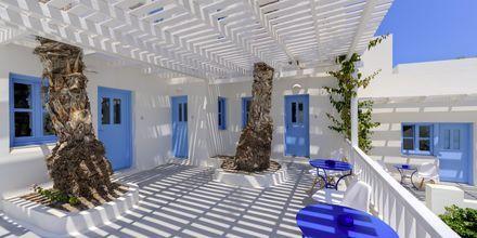 Terrasse på Hotel Sigalas på Santorini, Grækenland.