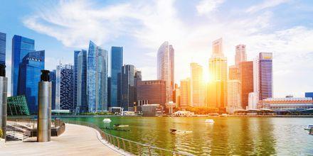 Singapore er kendt for sine skyskrabere, der står ved vandet.