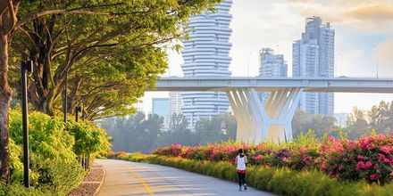 Smukke Singapore.