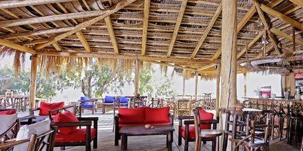 Beach taverna på Sirena Residence & Spa på Samos, Grækenland
