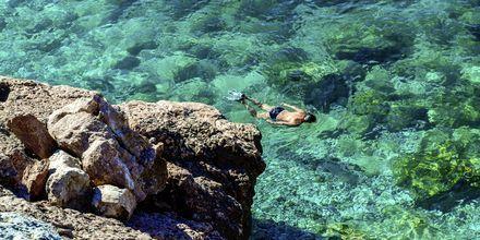 Snorkling i det krystalklare vand.