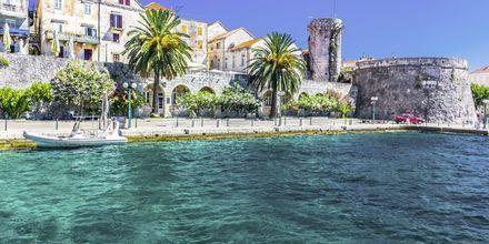 Korcula er en af de frodigste øer i Adriaterhavet.