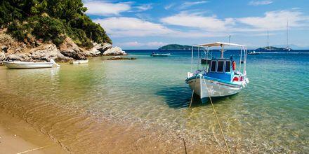 Smukke Skiathos, Grækenland.
