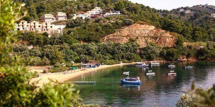 Udsigt over Tzaneria Beach  på Skiathos, Grækenland.