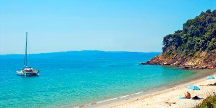 En af de smukke strande på Skiathos, Grækenland.