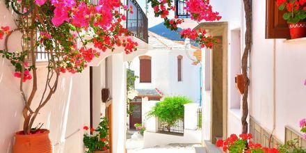 Skopelos by, Grækenland.