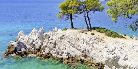 Amarantos på Skopelos, Grækenland.