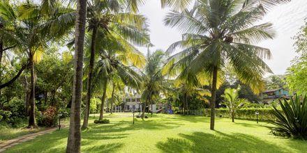 Sonesta Inns i Goa i Indien.