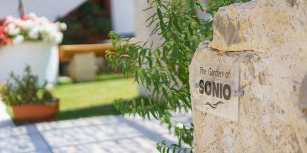 Hotel Sonio Beach i Platanias på Kreta, Grækenland.