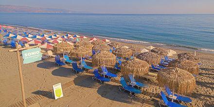 Stranden ved hotel Sonio Beach i Platanias på Kreta, Grækenland.