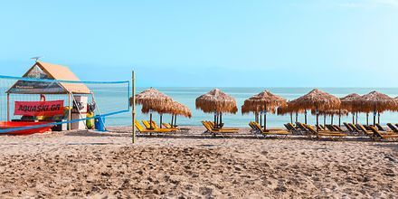 Stranden ved Hotel Ideal Beach på Kreta, Grækenland.