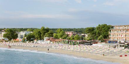 Strand i Sozopol, Bulgarien.