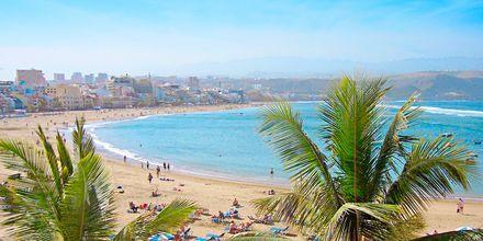 Las Canteras-stranden på Gran Canaria
