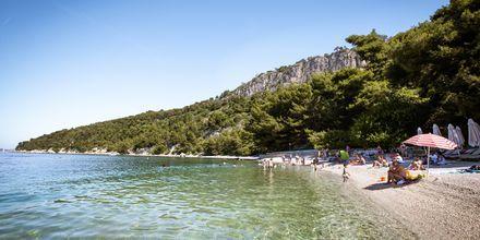 Kasjuni Beach, Split i Kroatien.