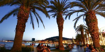 Splits hyggelige havnepromenade, Rivan