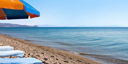 Stranden ved Hotel St Constantine på Kos, Grækenland.
