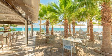 Restaurant på Hotel Star Beach Village & Waterpark i Hersonissos på Kreta.