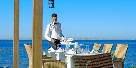 Restaurant Alexander på Steigenberger Al Dau Beach, Hurghada i Egypten.