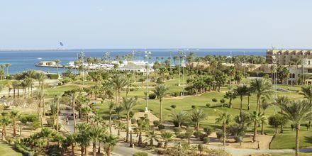 Området ved Hotel Steigenberger Pure Lifestyle i Hurghada, Egypten.