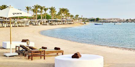 Stranden ved Hotel Steigenberger Pure Lifestyle i Hurghada, Egypten.