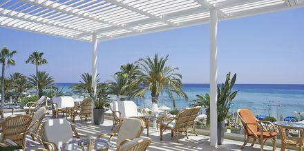 Otello Bar på Sunrise Beach i Fig Tree Bay, Cypern.