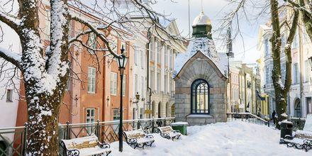 Tallinn er et hyggeligt rejsemål om vinteren.