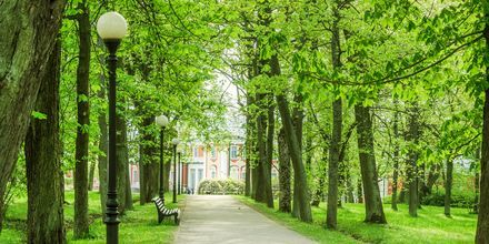 Parken Kadriorg i Tallinn, Estland.