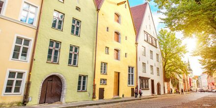 Farverige huse i Tallinn i Estland.