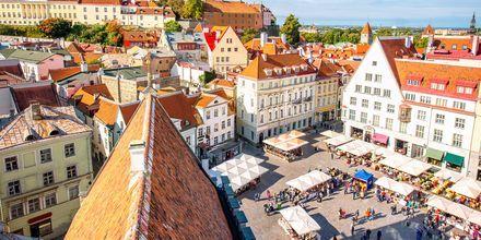 Marked i den gamle by, Tallinn.