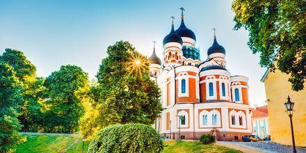 Alexander Nevskij-katedralen på DOmbjerget i Tallinn.