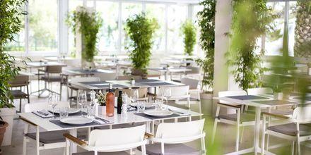 Restaurant på hotel Tamaris i Tucepi på Markaska riviera