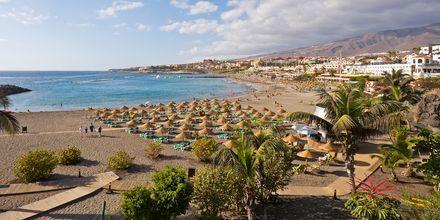Strand på Tenerife, De Kanariske Øer.