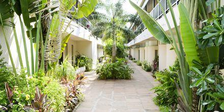 The O Hotel, Goa, Indien