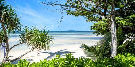 Stranden ved The Passage Samui Villas & Resort, Thailand.