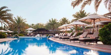 Pool på The Westin Dubai Mina Seyahi i Dubai