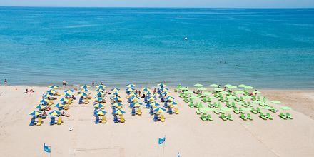 Stranden ved Hotel Theo på Kreta, Grækenland.